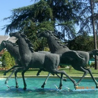"""""""Konji u trku"""", Čelarevo, 5,5×3,5×1,5m"""